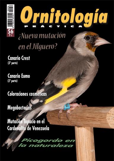 Ornitología Práctica 56