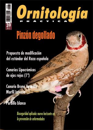 Revistas el blog de ornitolog a pr ctica for Lugano marfil